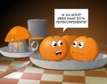 Cartoon; de persconferentie.