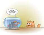 Cat&fish cartoon; zullen we nog een rondje?