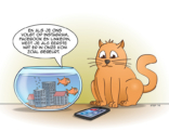 Cat&fish cartoon; Volgen op Social media.