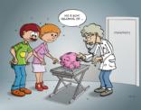 Spaarvarkentje bij de dierenarts